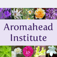 Aromahead Institute logo, used with permission of Andrea Butje