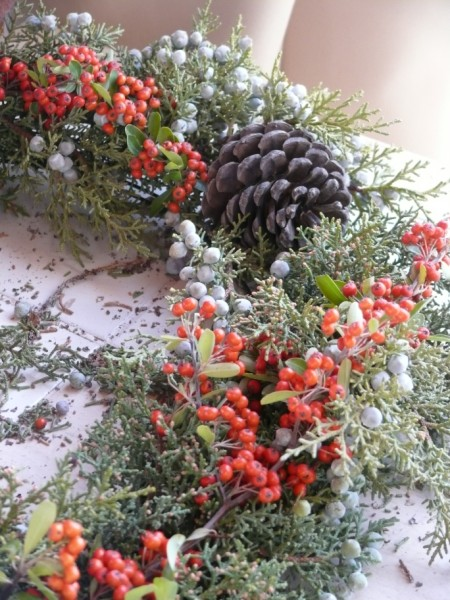 Your Holiday wreath will start to fill out as you add more plant materials... (copyright Sharon Falsetto, all rights reserved)
