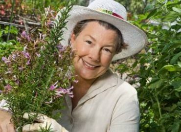 Blog post from Aromatherapy Notes: Essential Oils for Gardeners