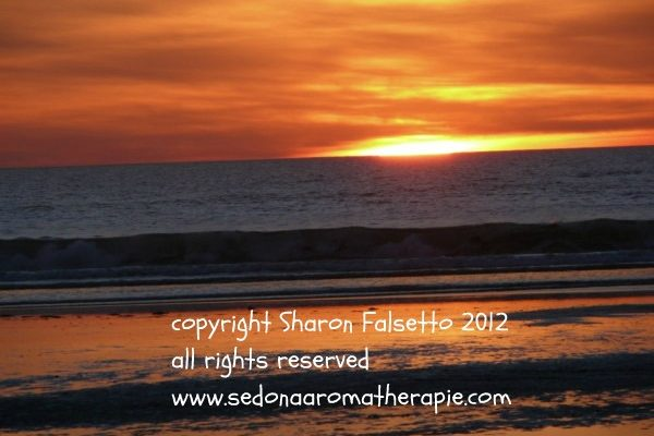 Aromatherapy for the beach, copyright Sharon Falsetto, all rights reserved