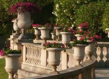 Luxembourg Gardens, Paris, copyright Sharon Falsetto, All Rights Reserved