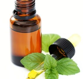 Essential oils and plants, istockphoto, used with permission