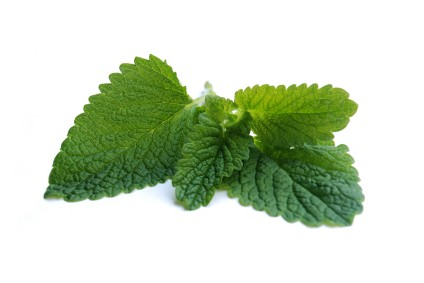Peppermint essential oil is used in aromatherapy practice, ISP