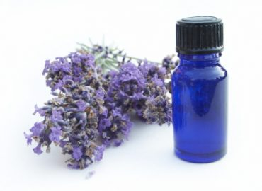 Lavender as an essential oil, photo credit: ISP