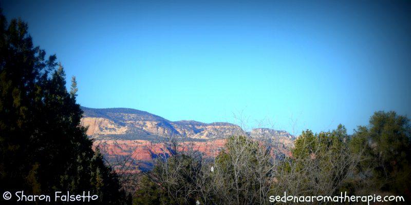 Sedona, Arizona: Photo Copyright, Sharon Falsetto