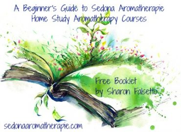 A Beginner's Guide to Sedona Aromatherapie Home Study Aromatherapy Courses