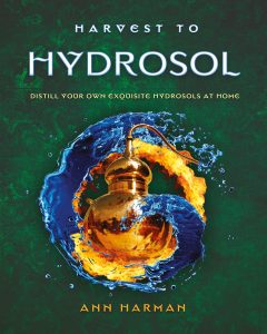 Harvest to Hydrosol by Ann Harman: Used with Author's Permission