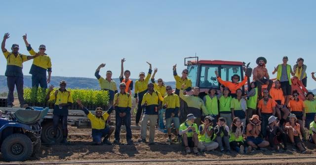 Santanol Planting Team 2016: Used with Permission of Santanol
