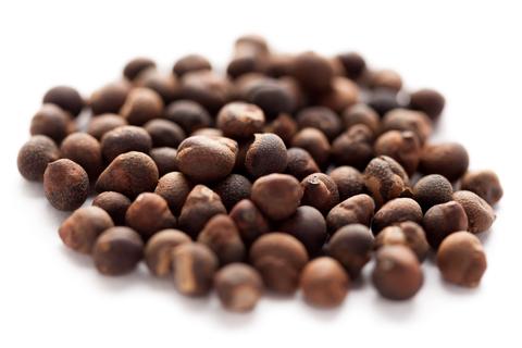 Sandalwood Seeds are Extracted to Make Sandalwood Seed Oil