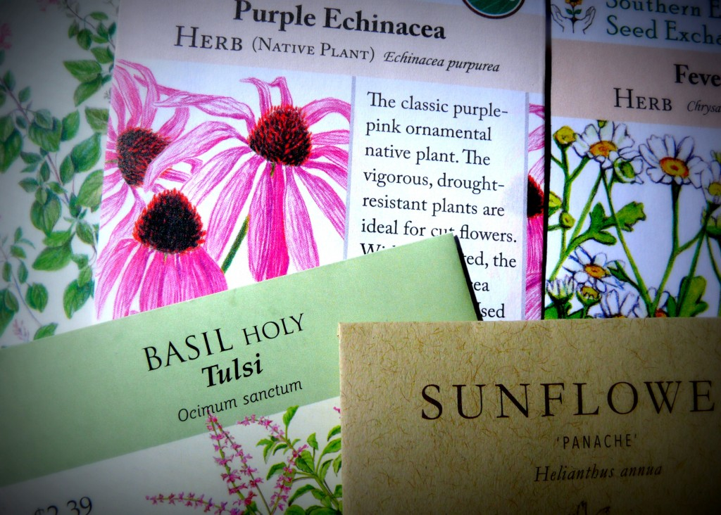 Aromatic Seed Suppliers for an Aromatic Garden: Copyright Sharon Falsetto