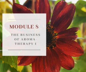 Certificate in Holistic Aromatherapy Module 8