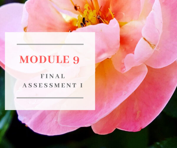 Certificate in Holistic Aromatherapy Assessment and Examination