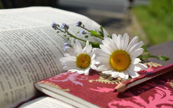 aromatherapy professional writing services