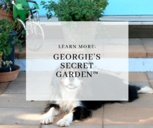 Georgies Secret Garden