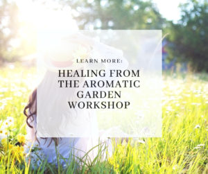 Healing from the Aromatic Garden Workshop
