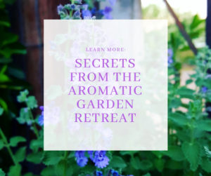 Secrets from the Aromatic Garden Retreat