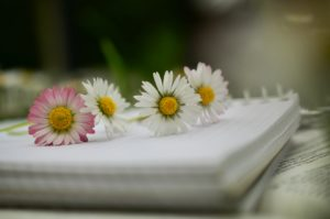 basic aromatherapy writing and editing services
